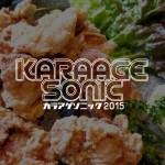 karaagesonicbanner3-2